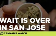 San-Jose-cannabis-dispensary-attracts-big-crowds