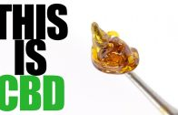 WATCH-As-CBD-Is-EXTRACTED-From-Raw-HEMP-Flowers-Bought-Online
